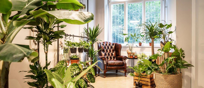 Sustainable flower shop in Berlin