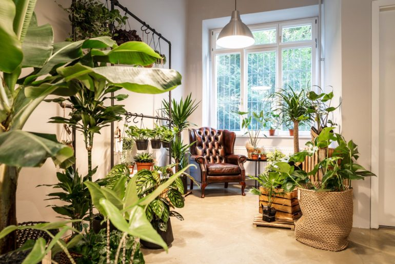 Sustainable flower shop in Berlin