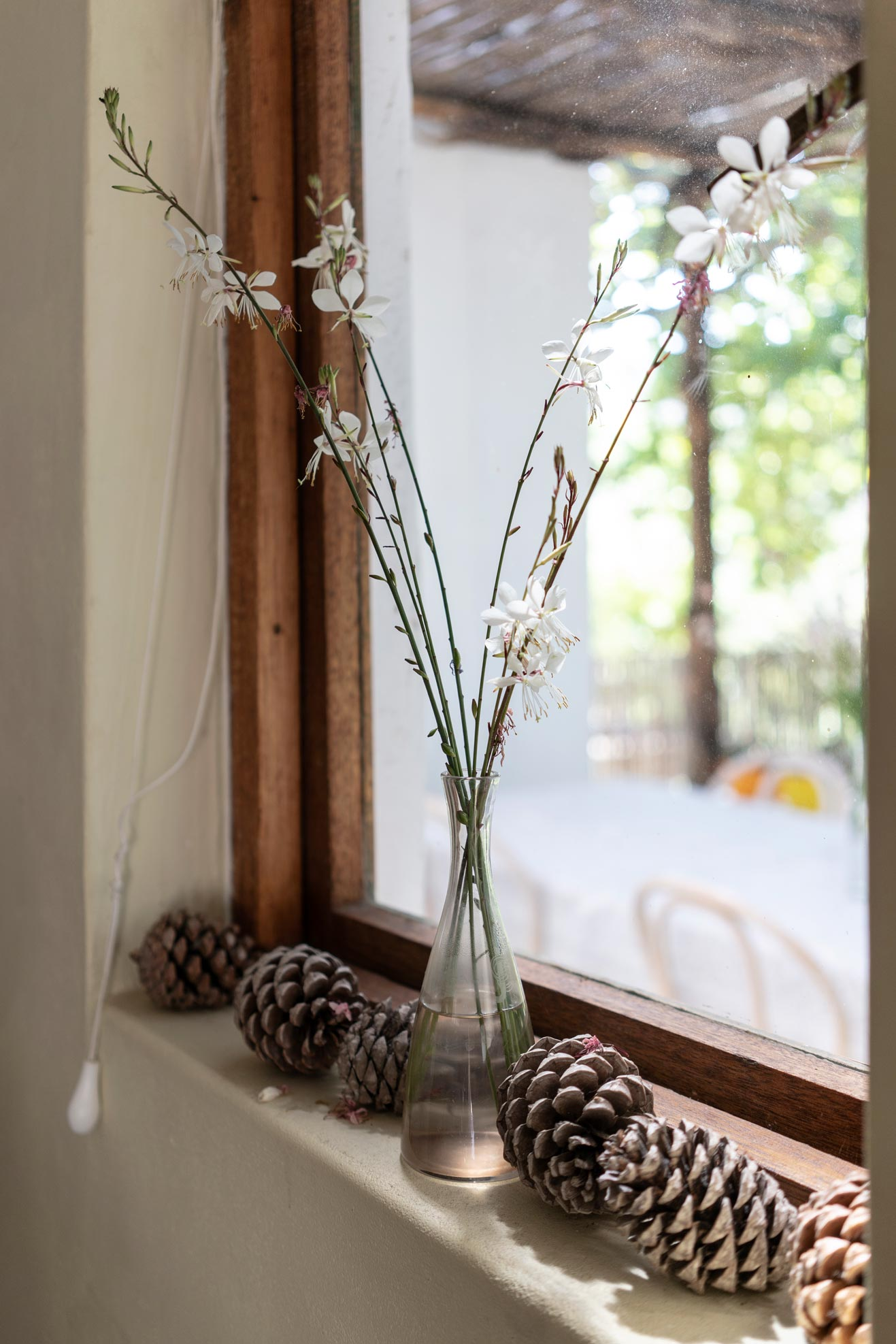 Window decorated with flowers and pine cones