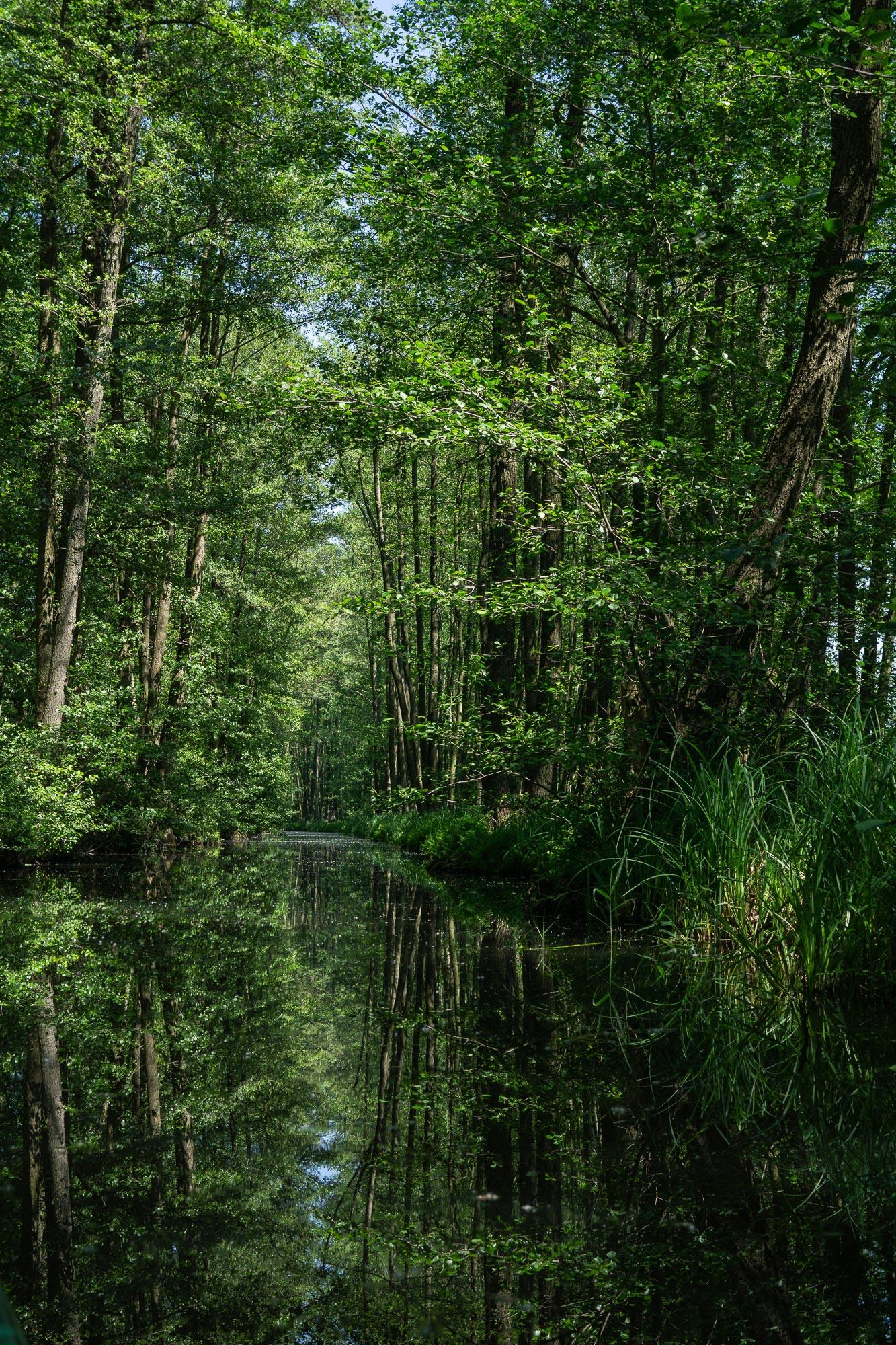 Spreewald Biosphere, Brandenberg