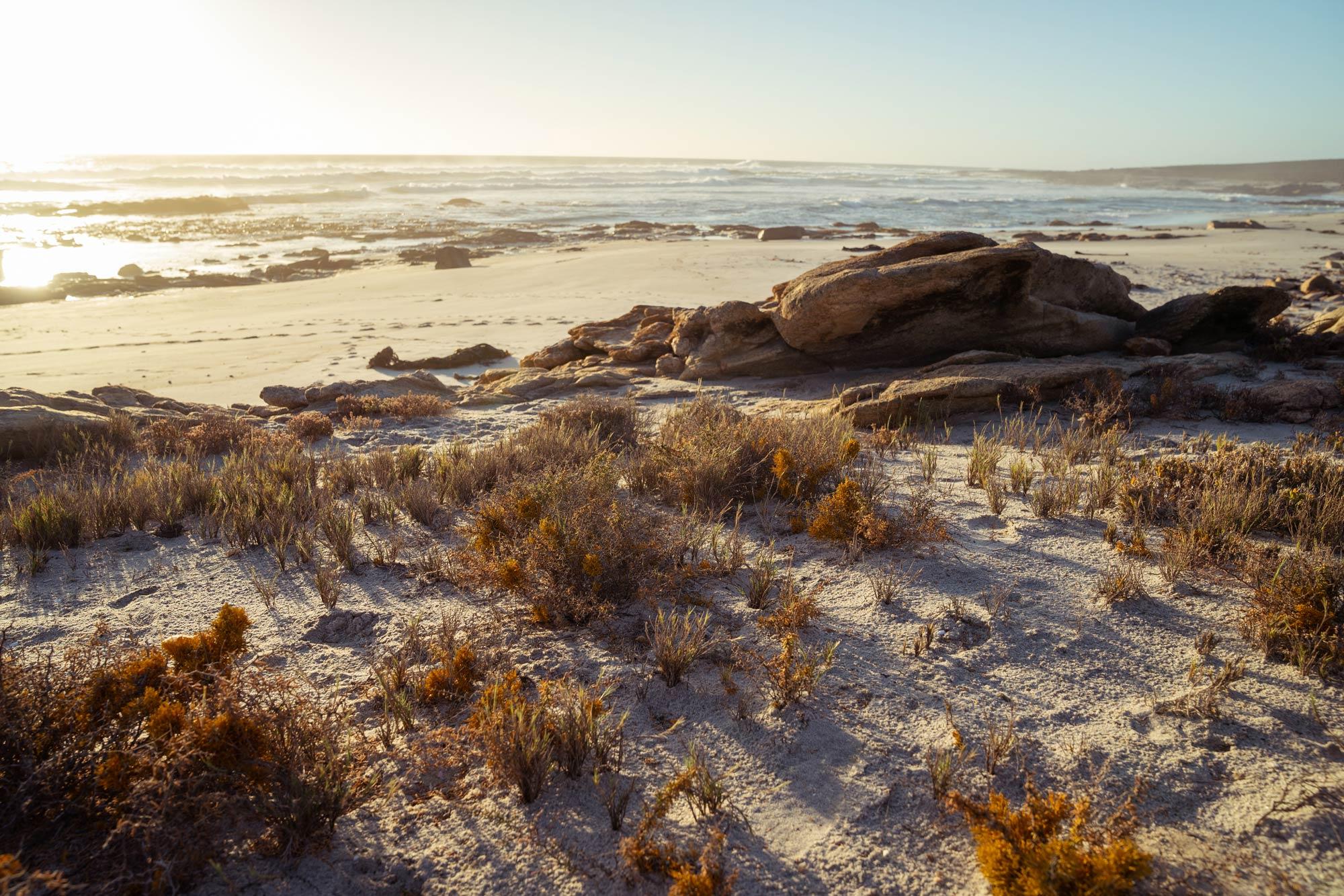 Namaqua National Park Image Copyright Soonafternoon