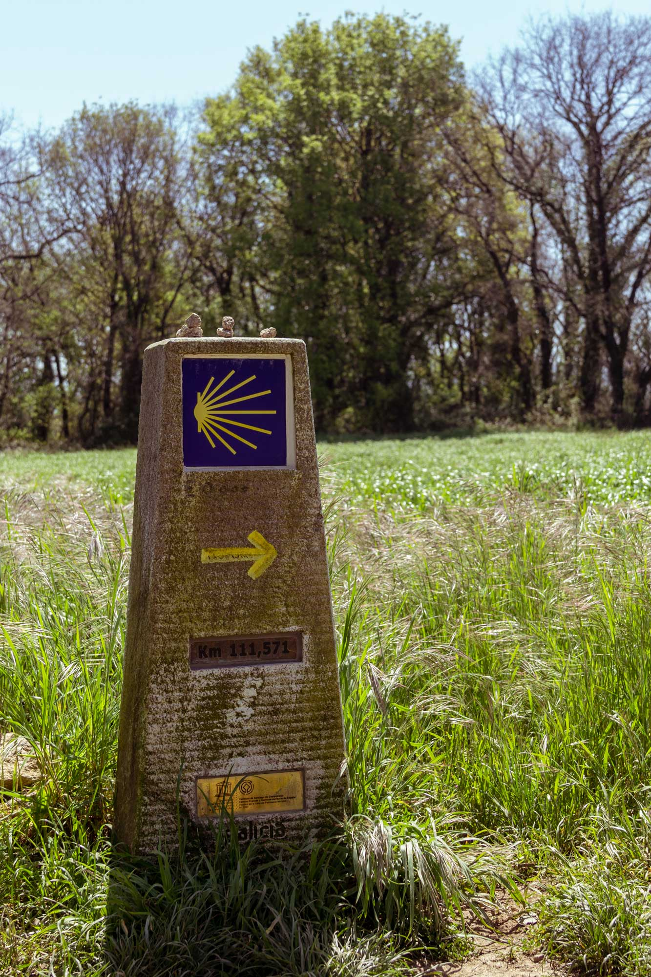 Signage of the Camino de Santiago