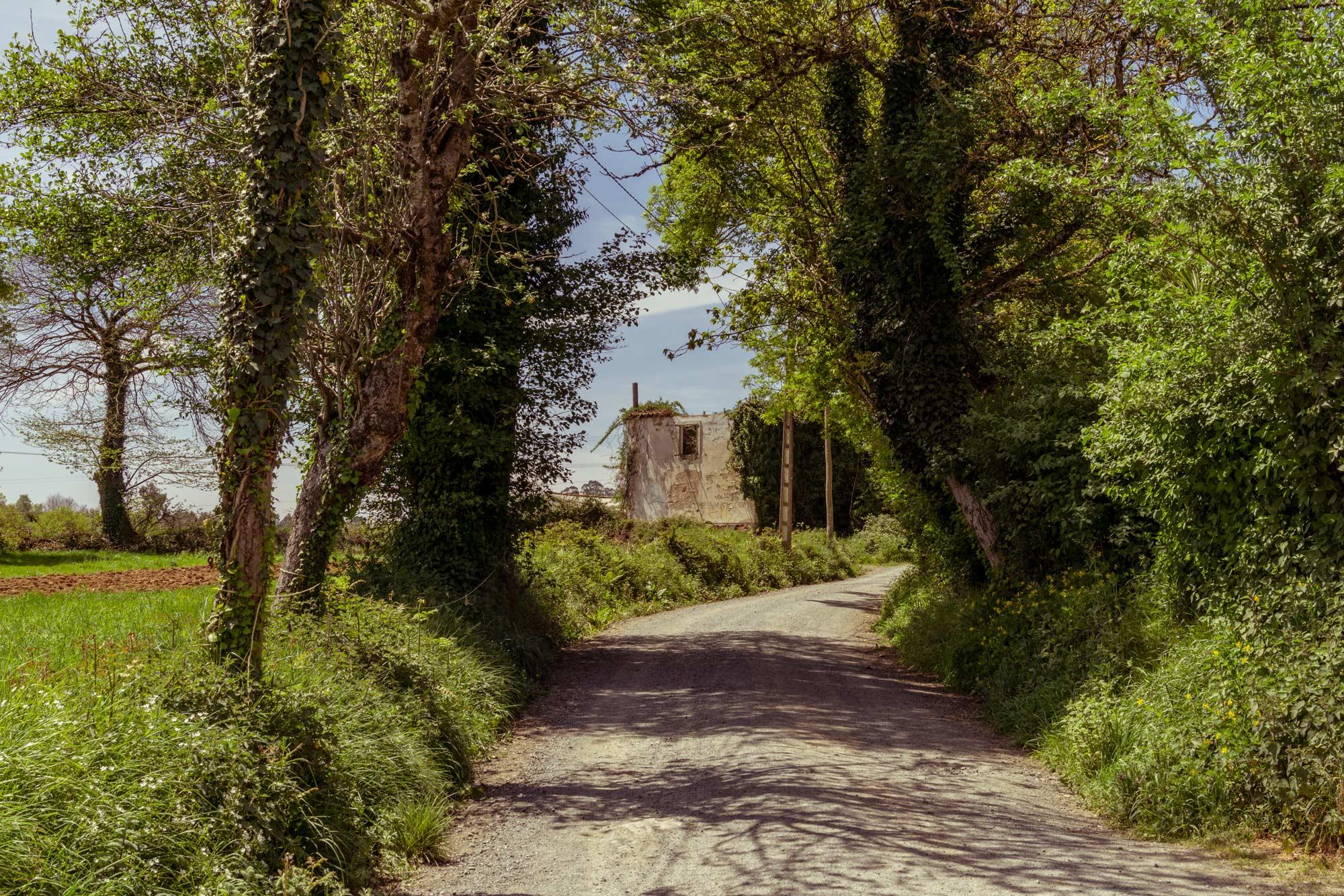 Pilgrimage of Compostela