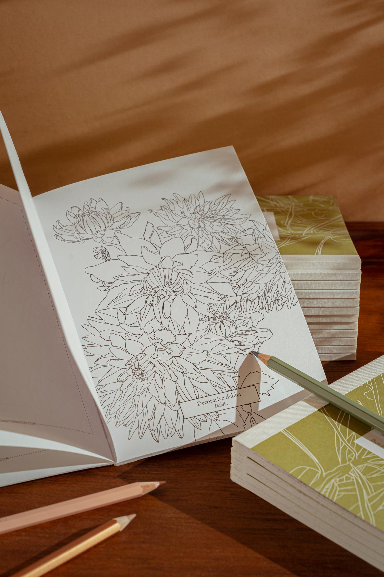 Botanical Colouring Book with plants and flowers