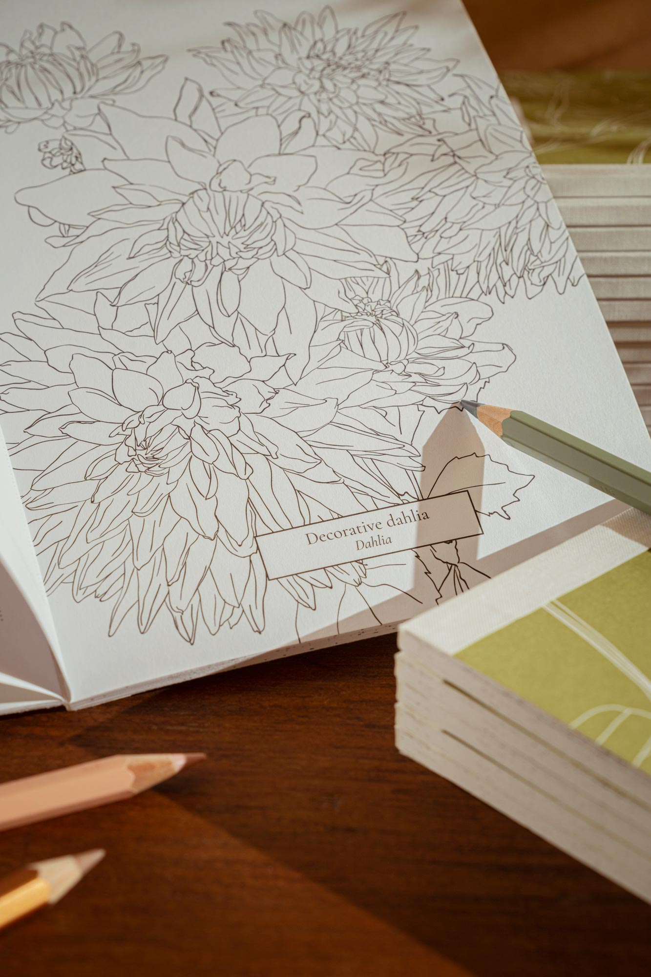 Botanical Colouring Book with recycled paper and eco friendly printing