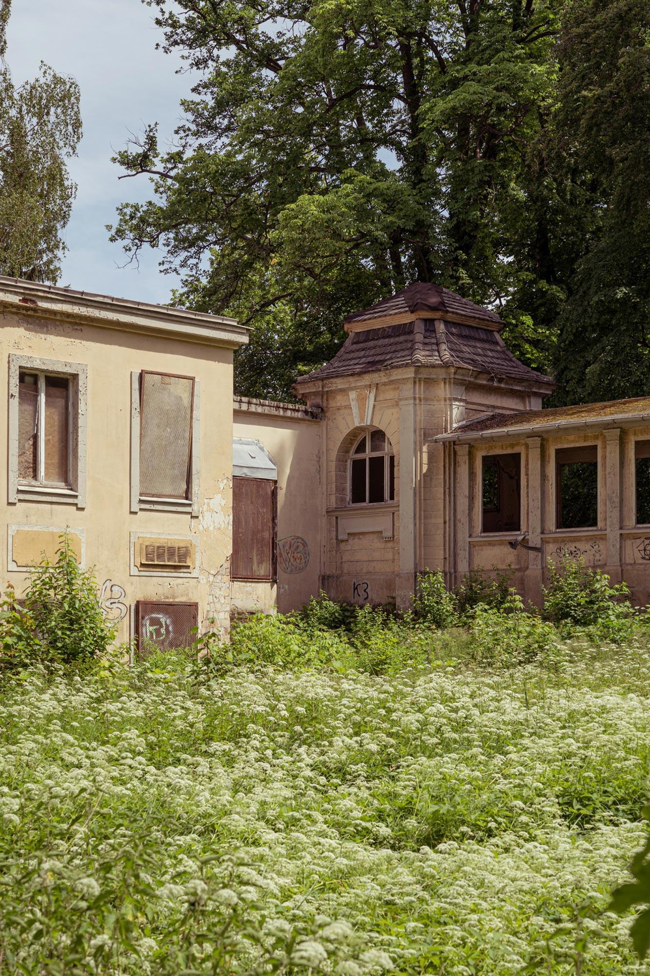 Foraging at Dhamsmuhlen Schloss